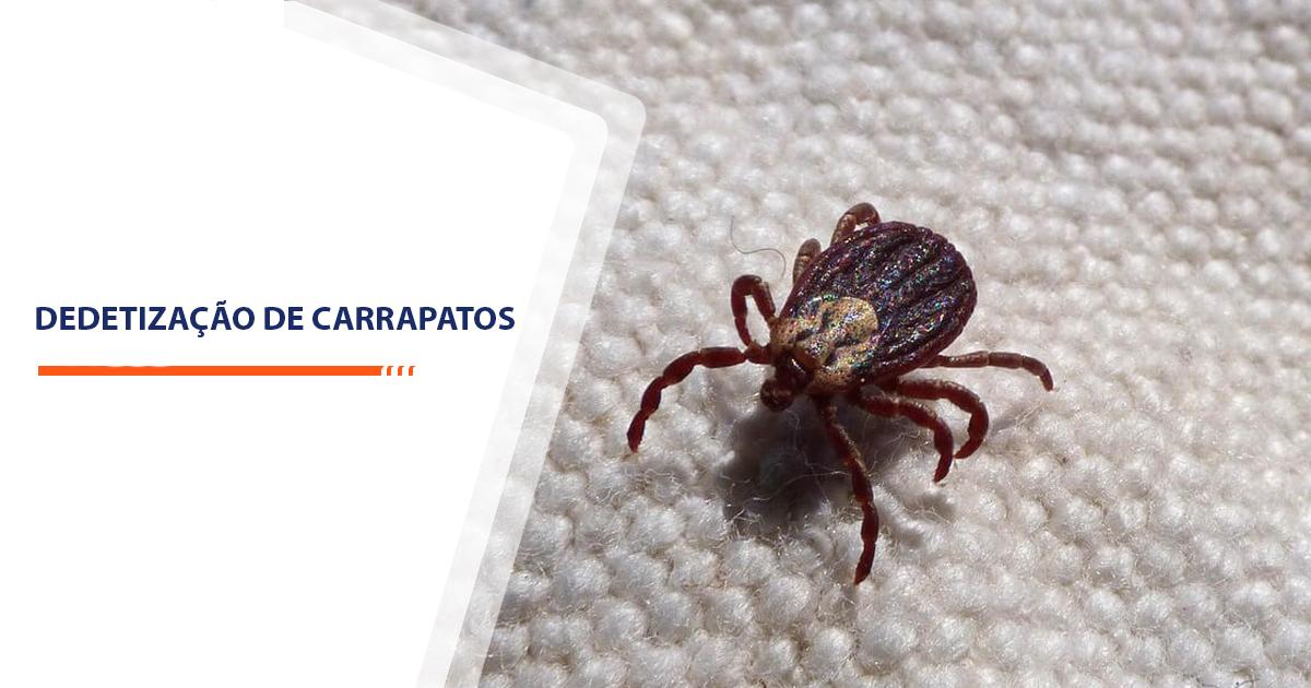 Dedetização de Carrapatos